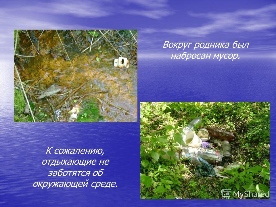 Вокруг родника был набросан мусор. К сожалению, отдыхающие не заботятся об окружающей среде.