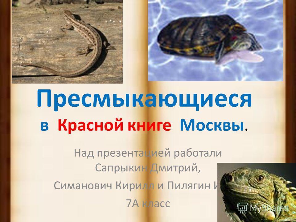 Красная книга редких и исчезающих видов. (Животные)