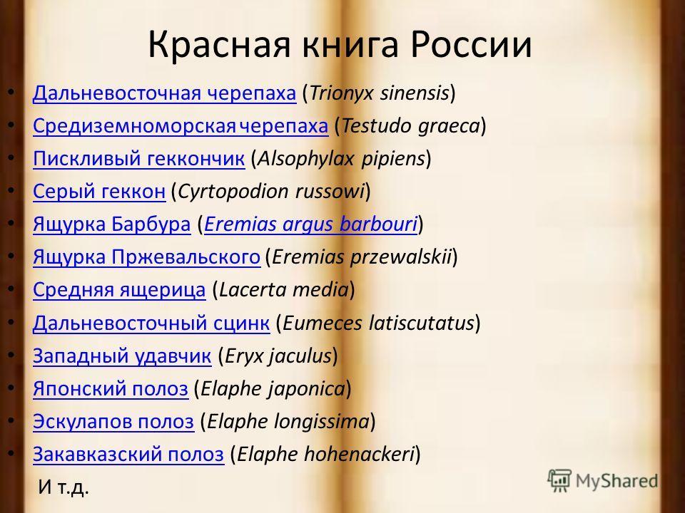 Живородящая ящерица Чешуйчатые / Ящерицы.На территории Москвы обитает в типичных для неё природных биотопах - на малонарушенных лесных опушках и полянах, закустаренных суходольных и влажных лугах, заболоченных участках, которые в черте города сохрани