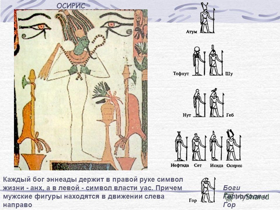 ОСИРИС Каждый бог эннеады держит в правой руке символ жизни - анх, а в левой - символ власти уас. Причем мужские фигуры находятся в движении слева направо Боги Гелиополя и Гор