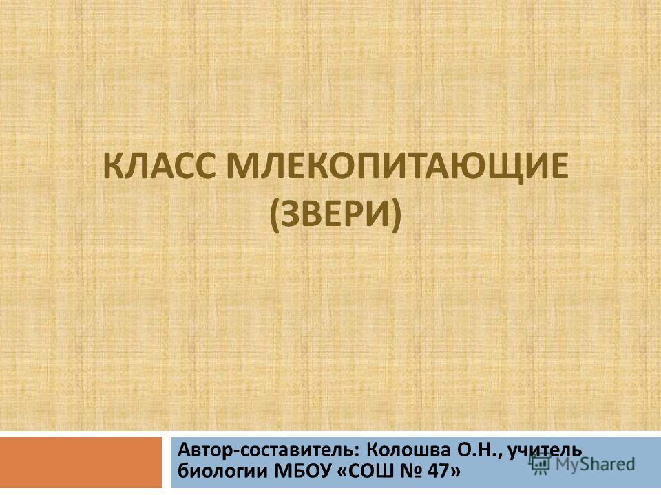 КЛАСС МЛЕКОПИТАЮЩИЕ ( ЗВЕРИ ) Автор - составитель : Колошва О. Н., учитель биологии МБОУ « СОШ 47»