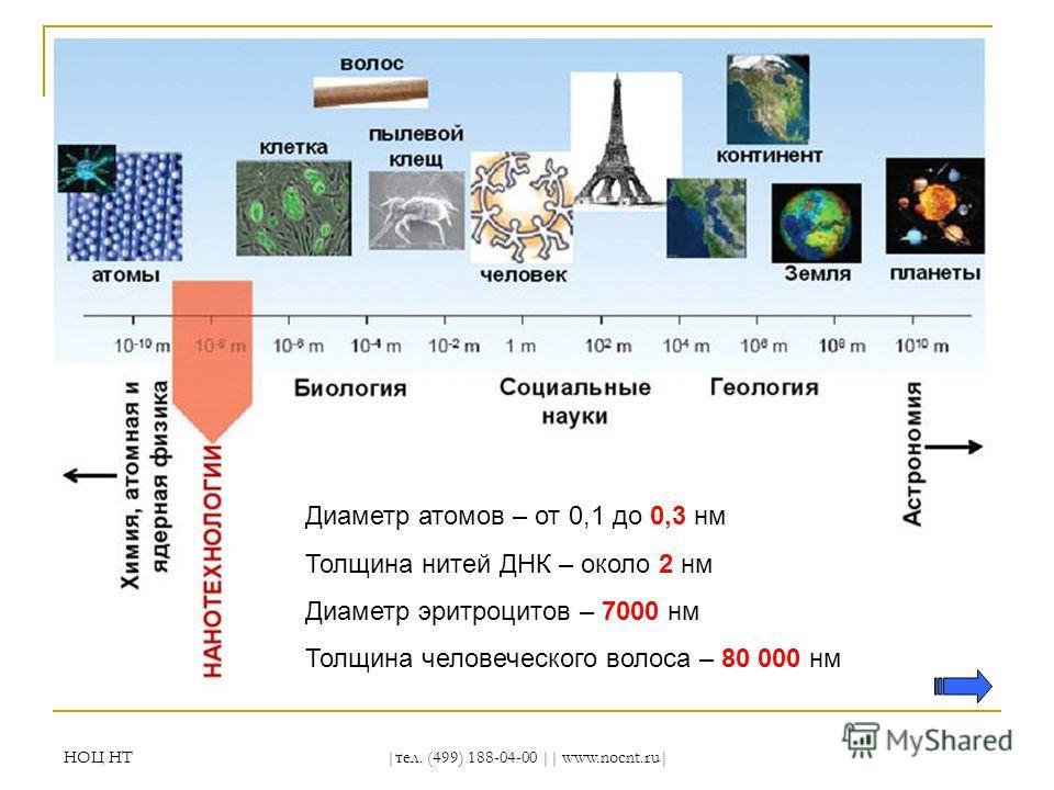 НОЦ НТ |тел. (499) 188-04-00 || www.nocnt.ru| Диаметр атомов – от 0,1 до 0,3 нм Толщина нитей ДНК – около 2 нм Диаметр эритроцитов – 7000 нм Толщина человеческого волоса – 80 000 нм