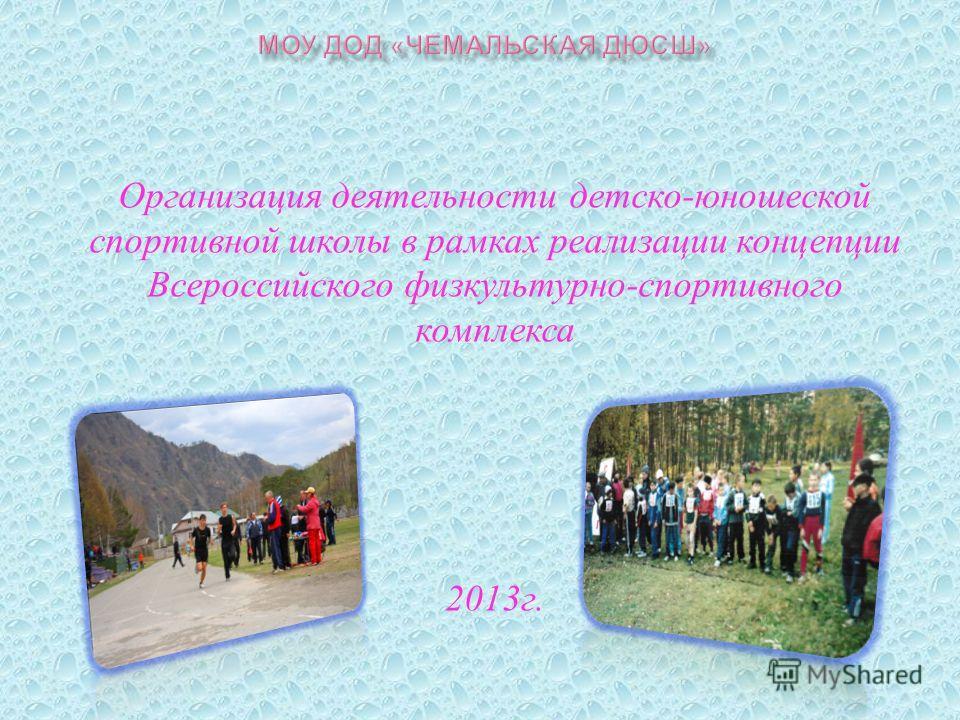 Организация деятельности детско - юношеской спортивной школы в рамках реализации концепции Всероссийского физкультурно - спортивного комплекса 2013 г.