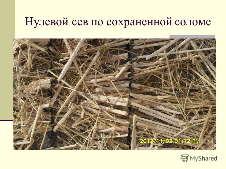 Нулевой сев по сохраненной соломе
