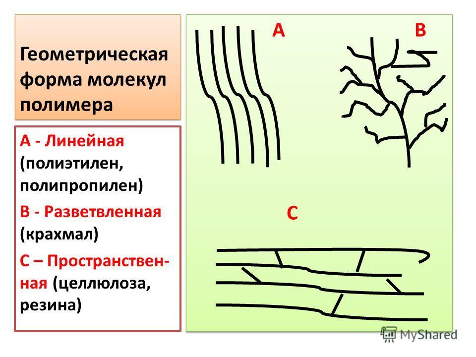 Геометрическая форма молекул полимера А В С А В С А - Линейная (полиэтилен, полипропилен) В - Разветвленная (крахмал) С – Пространствен- ная (целлюлоза, резина)