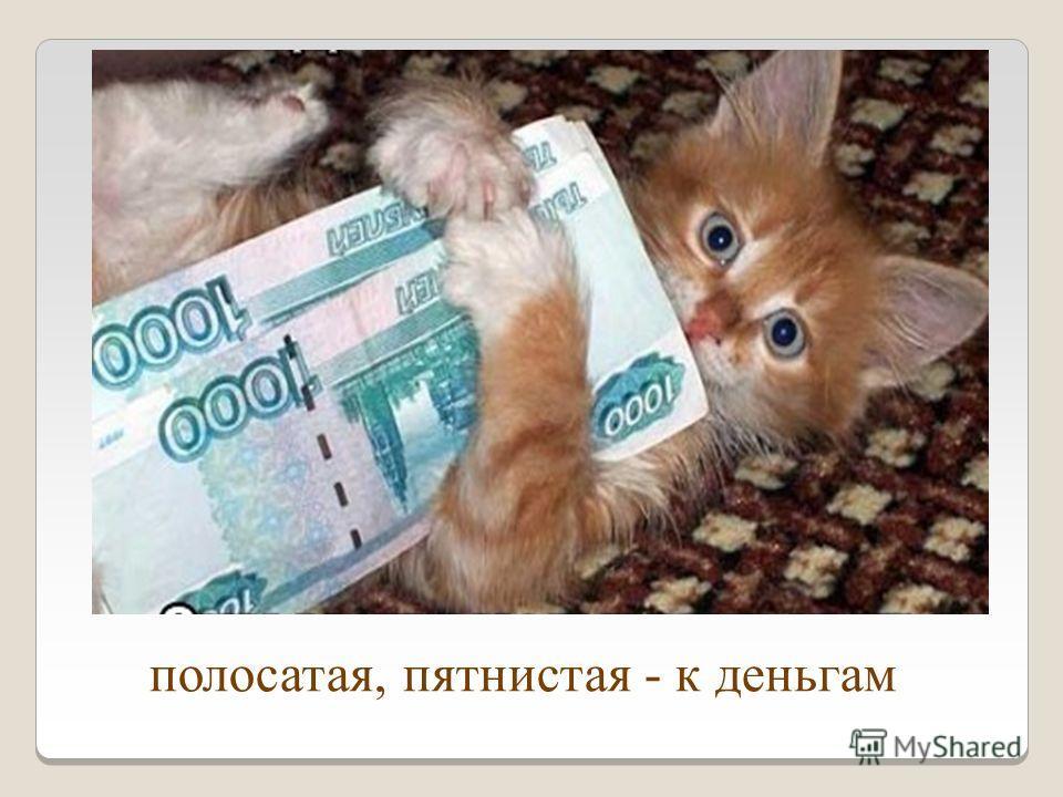 полосатая, пятнистая - к деньгам