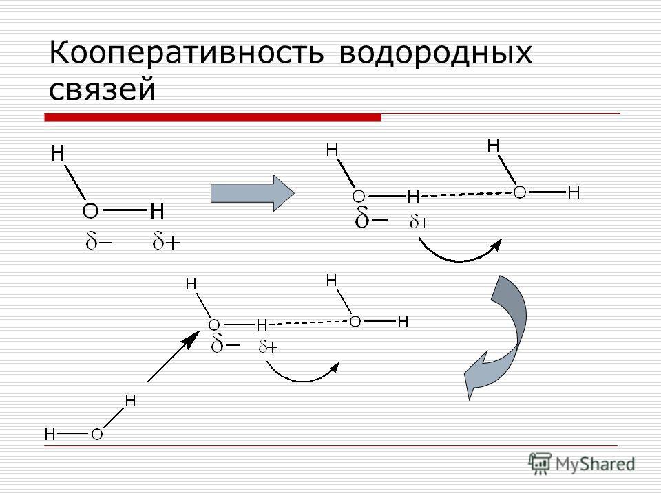 Кооперативность водородных связей