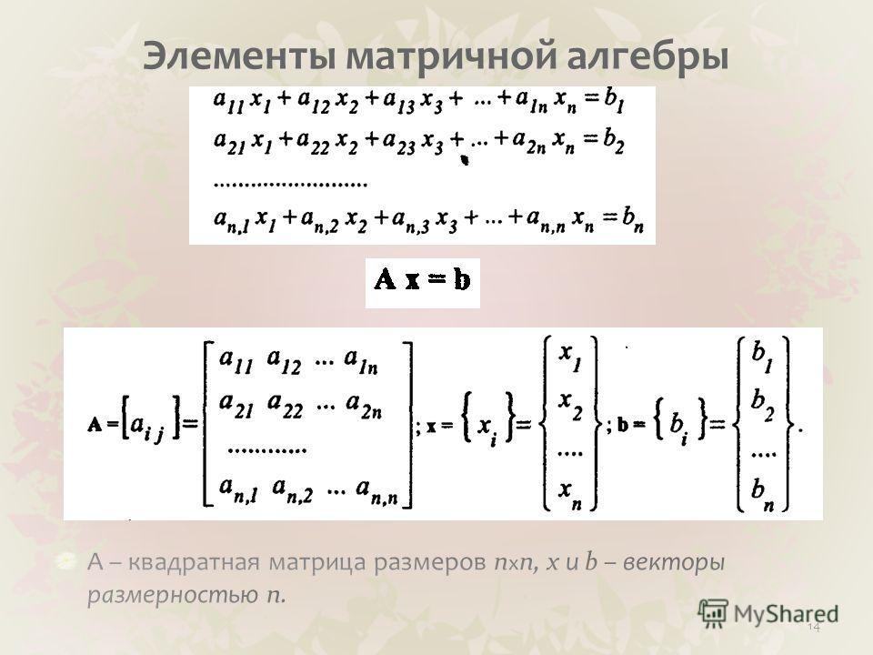 Элементы матричной алгебры 14
