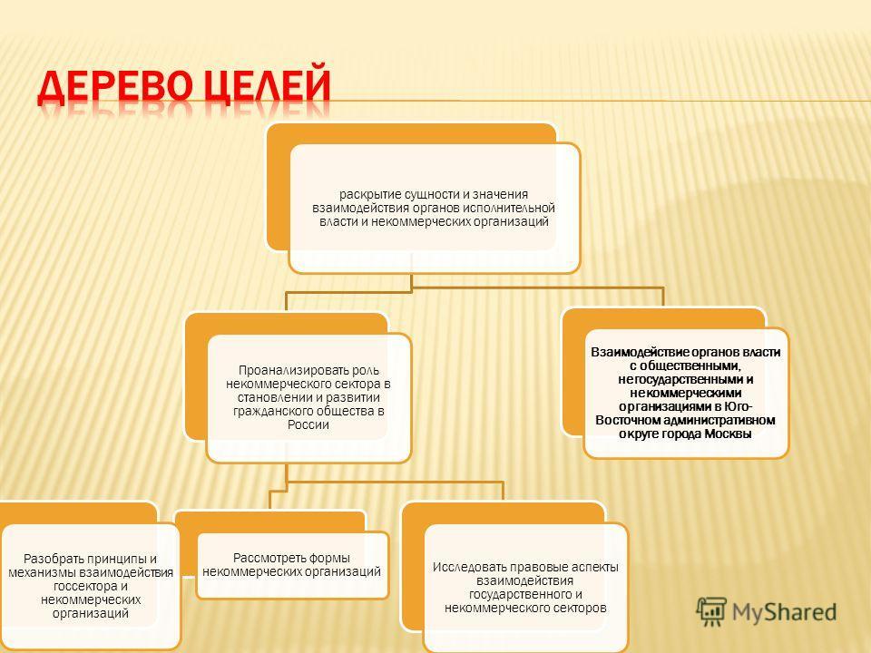 раскрытие сущности и значения взаимодействия органов исполнительной власти и некоммерческих организаций Проанализировать роль некоммерческого сектора в становлении и развитии гражданского общества в России Рассмотреть формы некоммерческих организаций