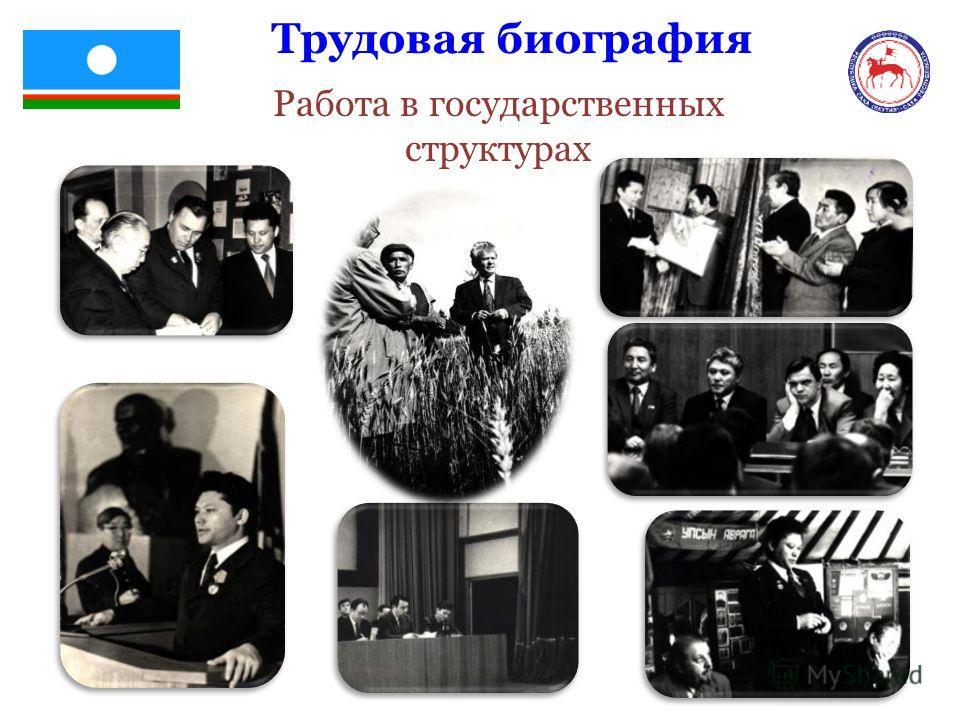 Трудовая биография Работа в государственных структурах