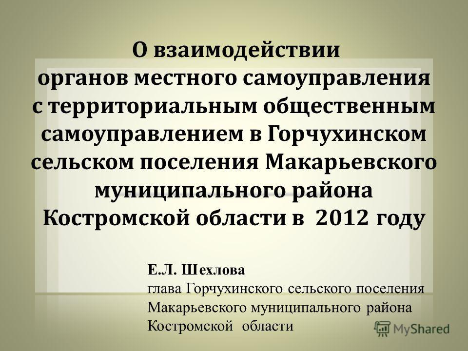 Е.Л. Шехлова глава Горчухинского сельского поселения Макарьевского муниципального района Костромской области