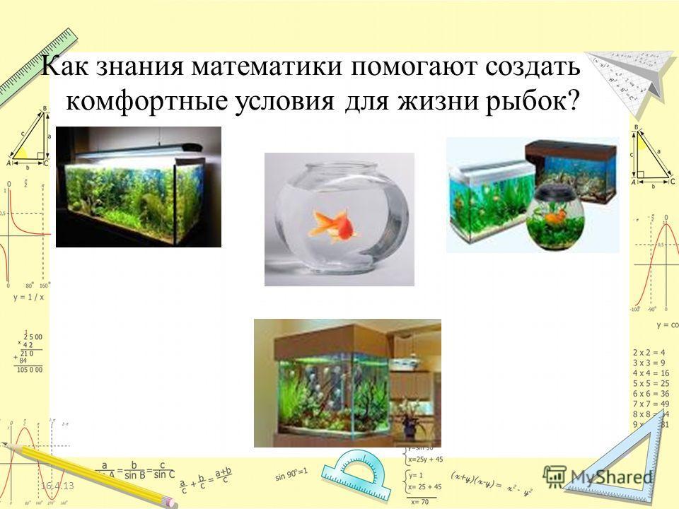 16.4.13 Как знания математики помогают создать комфортные условия для жизни рыбок?