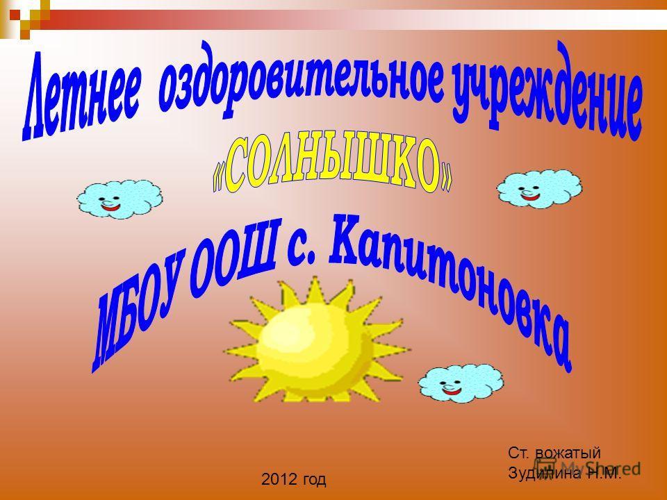 Ст. вожатый Зудилина Н.М. 2012 год