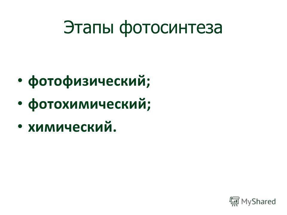 Этапы фотосинтеза фотофизический; фотохимический; химический.