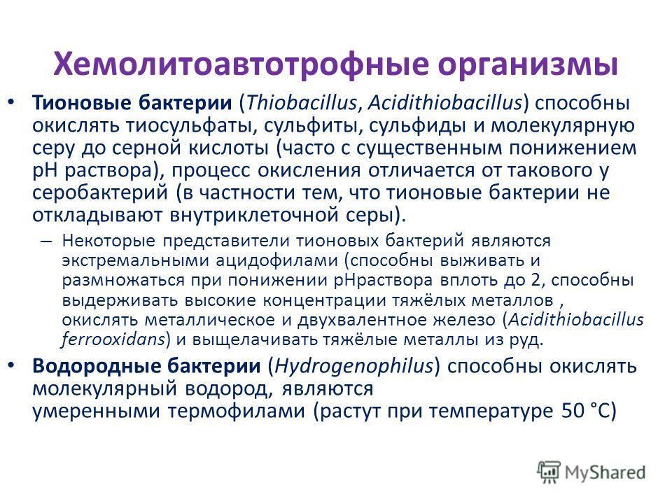 Хемолитоавтотрофные организмы Тионовые бактерии (Thiobacillus, Acidithiobacillus) способны окислять тиосульфаты, сульфиты, сульфиды и молекулярную серу до серной кислоты (часто с существенным понижением pH раствора), процесс окисления отличается от т