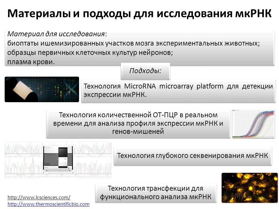 Материалы и подходы для исследования мкРНК Материал для исследования: биоптаты ишемизированных участков мозга экспериментальных животных; образцы первичных клеточных культур нейронов; плазма крови. Материал для исследования: биоптаты ишемизированных
