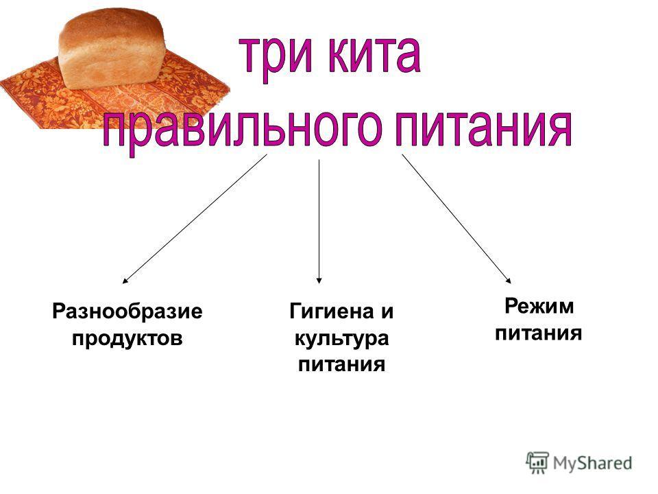 Разнообразие продуктов Гигиена и культура питания Режим питания