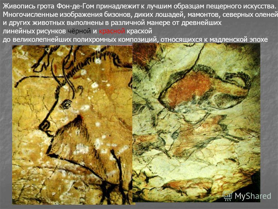 Живопись грота Фон-де-Гом принадлежит к лучшим образцам пещерного искусства. Многочисленные изображения бизонов, диких лошадей, мамонтов, северных оленей и других животных выполнены в различной манере от древнейших линейных рисунков чёрной и красной