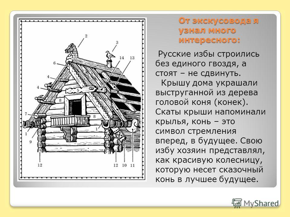 От экскусовода я узнал много интересного: Русские избы строились без единого гвоздя, а стоят – не сдвинуть. Крышу дома украшали выструганной из дерева головой коня (конек). Скаты крыши напоминали крылья, конь – это символ стремления вперед, в будущее
