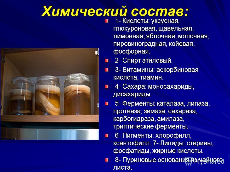 Химический состав: 1- Кислоты: уксусная, глюкуроновая, щавельная, лимонная, яблочная, молочная, пировиноградная, койевая, фосфорная. 1- Кислоты: уксусная, глюкуроновая, щавельная, лимонная, яблочная, молочная, пировиноградная, койевая, фосфорная. 2-