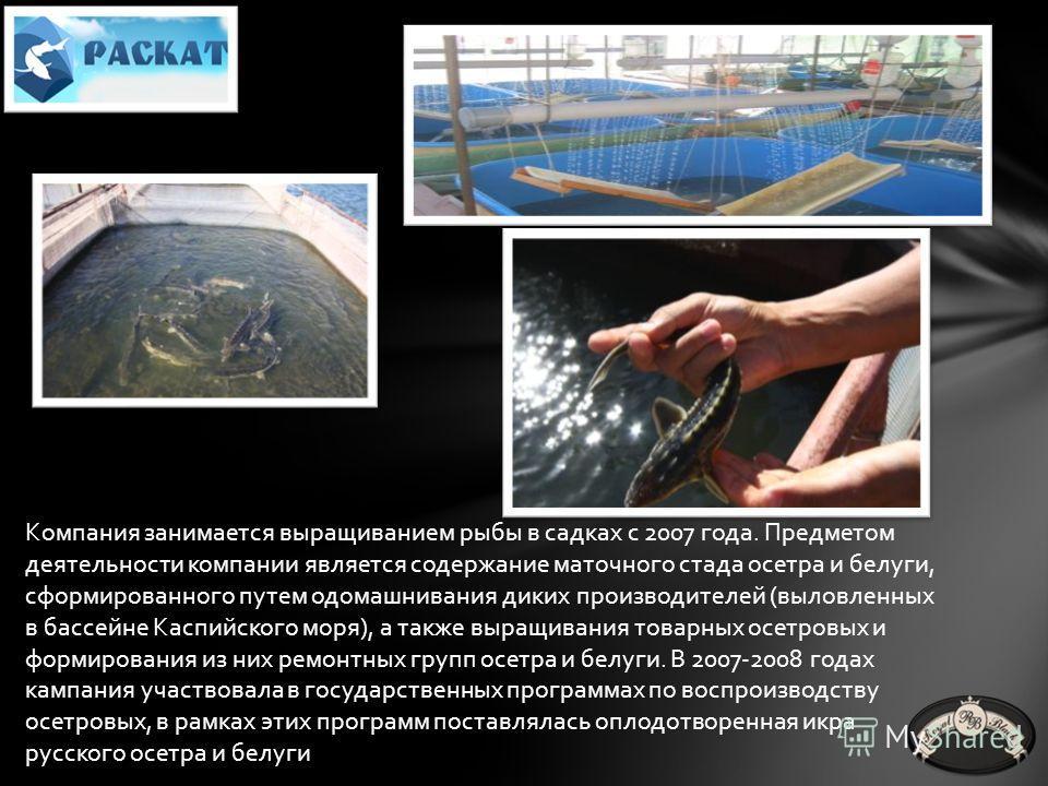 Рыбоводно–воспроизводственная компания, занимается выращиванием рыб и сбытом рыбной продукции. Садковая линия расположена в Наримановском районе Астраханской области в 45 км от Астрахани. В отличие от других типов хозяйств, вода поступающая в садково