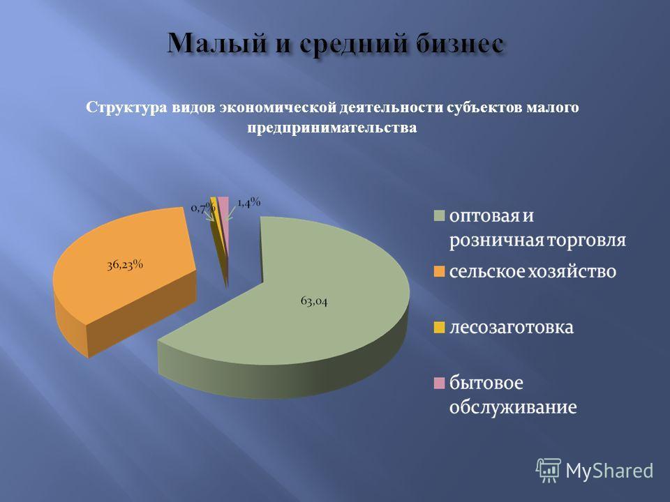 Структура видов экономической деятельности субъектов малого предпринимательства