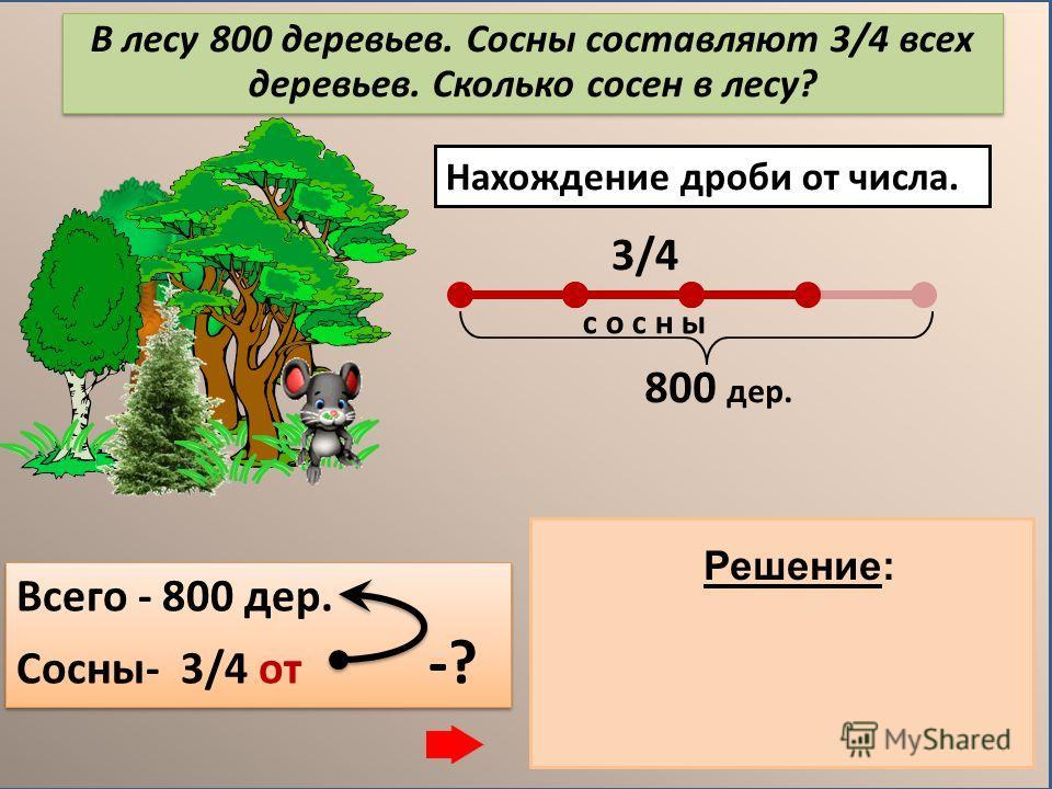 Основные задачи на дроби В лесу 800 деревьев. Сосны составляют 3/4 всех деревьев. Сколько сосен в лесу? Нахождение дроби от числа. Нахождение числа по значению его дроби. В лесу 600 сосен, что составляет 3/4 всех деревьев. Сколько всего деревьев в ле