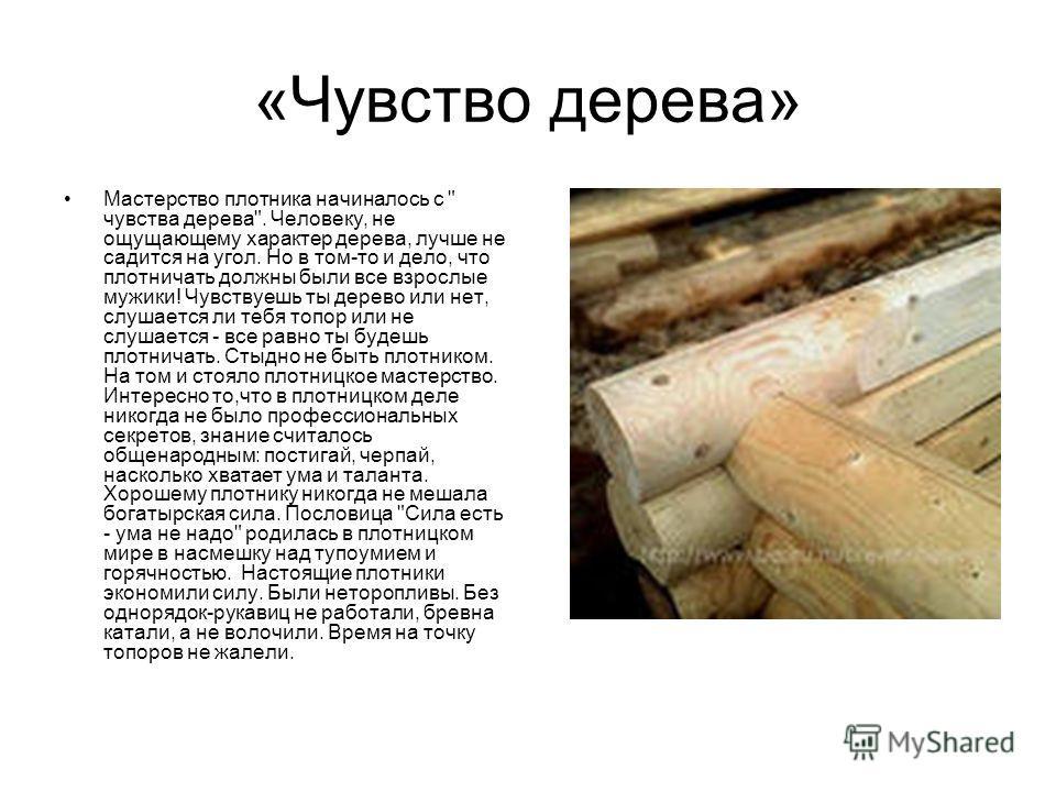 «Чувство дерева» Мастерство плотника начиналось с