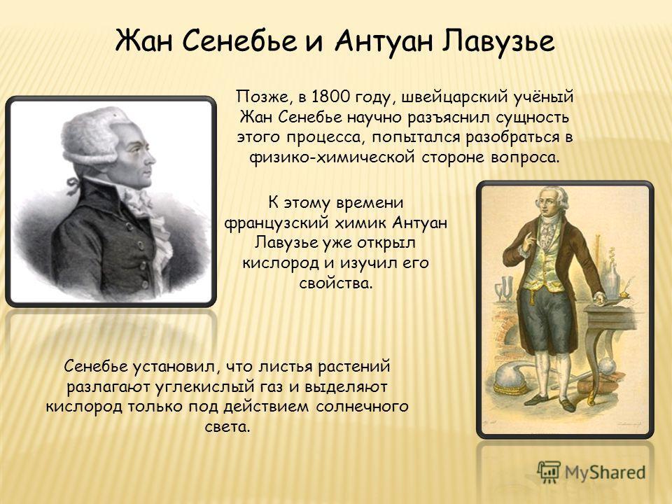 Жан Сенебье и Антуан Лавузье Позже, в 1800 году, швейцарский учёный Жан Сенебье научно разъяснил сущность этого процесса, попытался разобраться в физико-химической стороне вопроса. К этому времени французский химик Антуан Лавузье уже открыл кислород