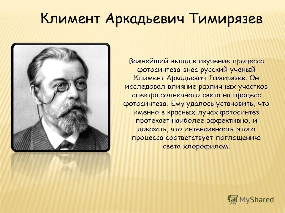 Важнейший вклад в изучение процесса фотосинтеза внёс русский учёный Климент Аркадьевич Тимирязев. Он исследовал влияние различных участков спектра солнечного света на процесс фотосинтеза. Ему удалось установить, что именно в красных лучах фотосинтез