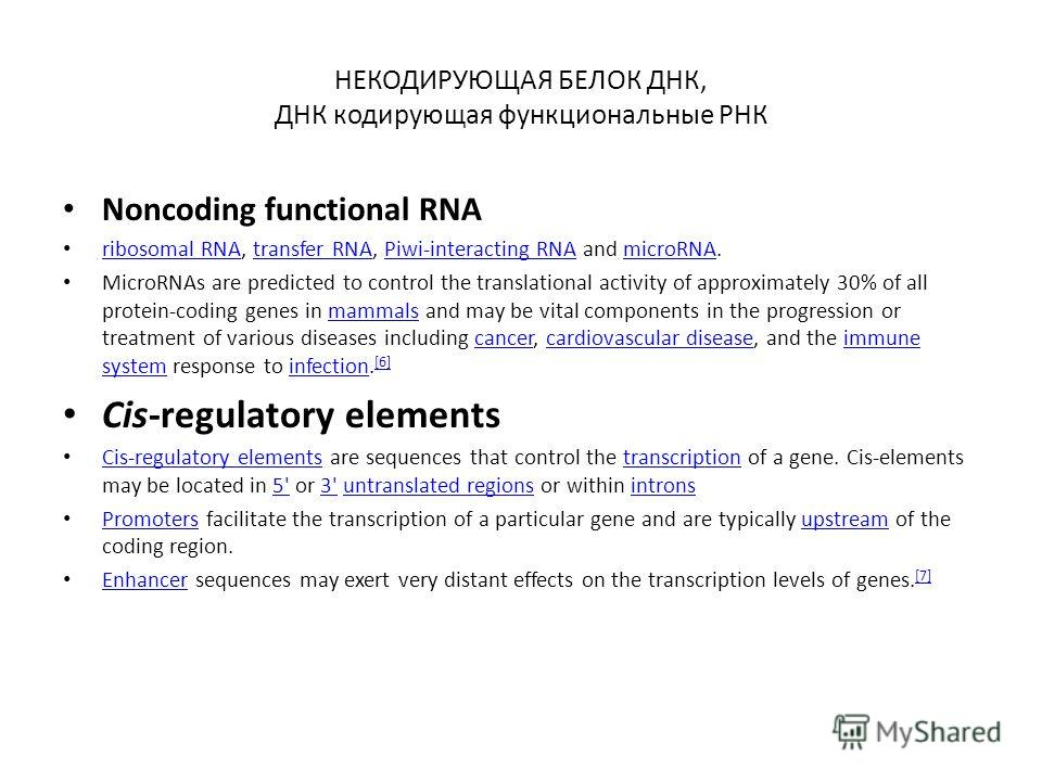 НЕКОДИРУЮЩАЯ БЕЛОК ДНК, ДНК кодирующая функциональные РНК Noncoding functional RNA ribosomal RNA, transfer RNA, Piwi-interacting RNA and microRNA. ribosomal RNAtransfer RNAPiwi-interacting RNAmicroRNA MicroRNAs are predicted to control the translatio