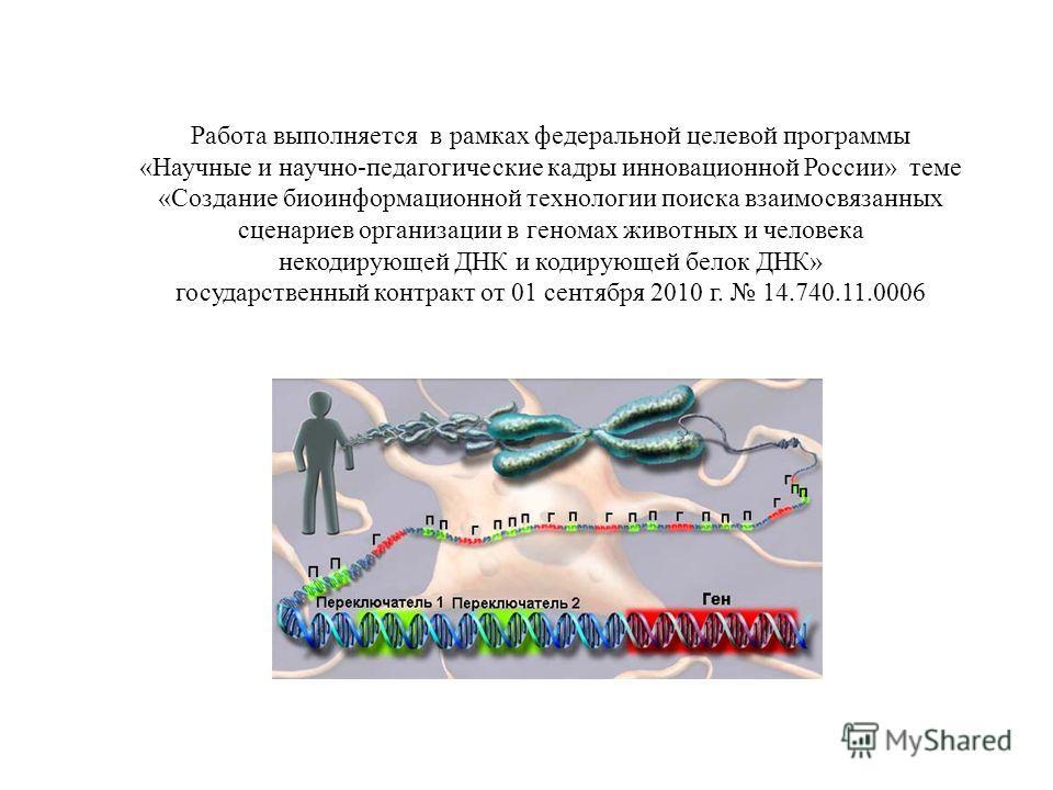 Работа выполняется в рамках федеральной целевой программы «Научные и научно-педагогические кадры инновационной России» теме «Создание биоинформационной технологии поиска взаимосвязанных сценариев организации в геномах животных и человека некодирующей