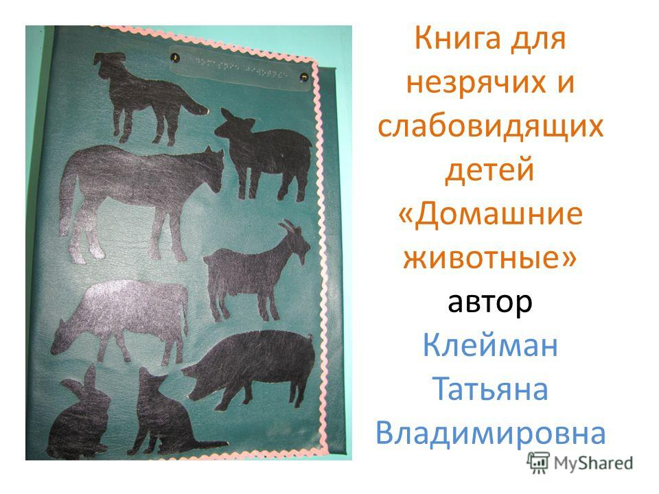 Книга для незрячих и слабовидящих детей «Домашние животные» автор Клейман Татьяна Владимировна