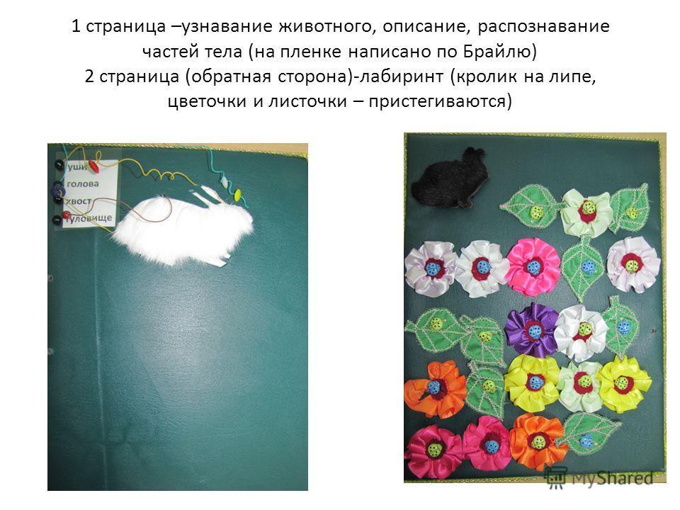 1 страница –узнавание животного, описание, распознавание частей тела (на пленке написано по Брайлю) 2 страница (обратная сторона)-лабиринт (кролик на липе, цветочки и листочки – пристегиваются)
