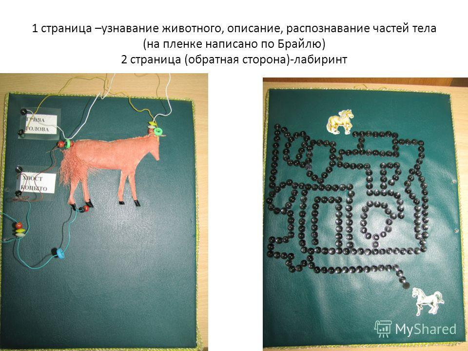 1 страница –узнавание животного, описание, распознавание частей тела (на пленке написано по Брайлю) 2 страница (обратная сторона)-лабиринт