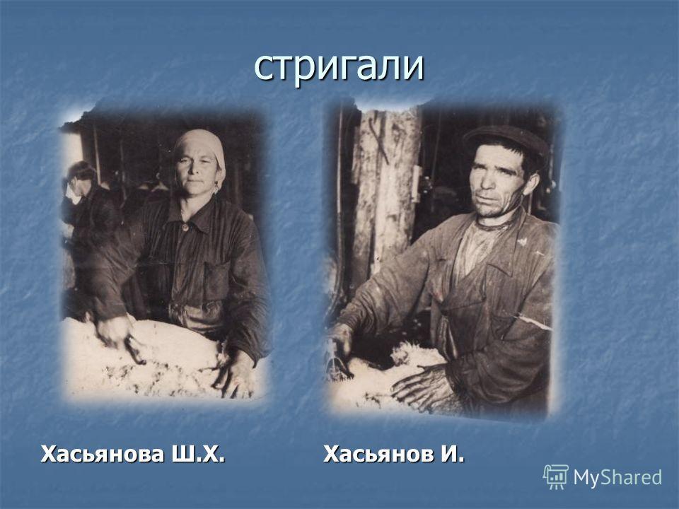 стригали Хасьянова Ш.Х. Хасьянов И. Хасьянов И.