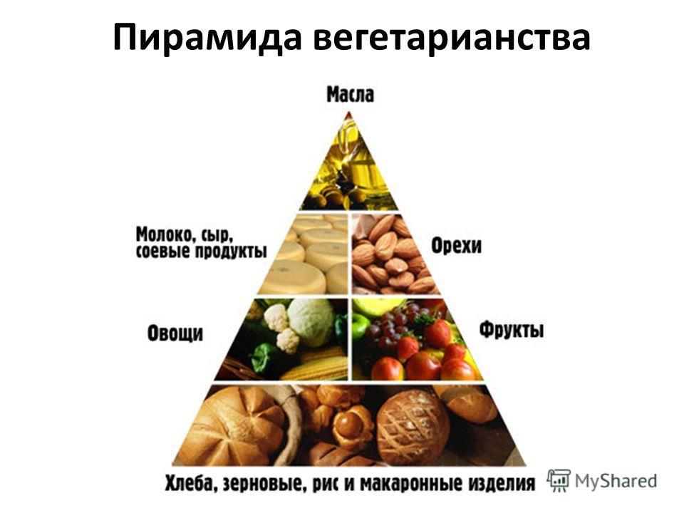 Пирамида вегетарианства