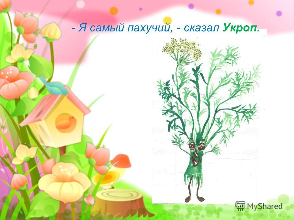 - Я самый пахучий, - сказал Укроп.