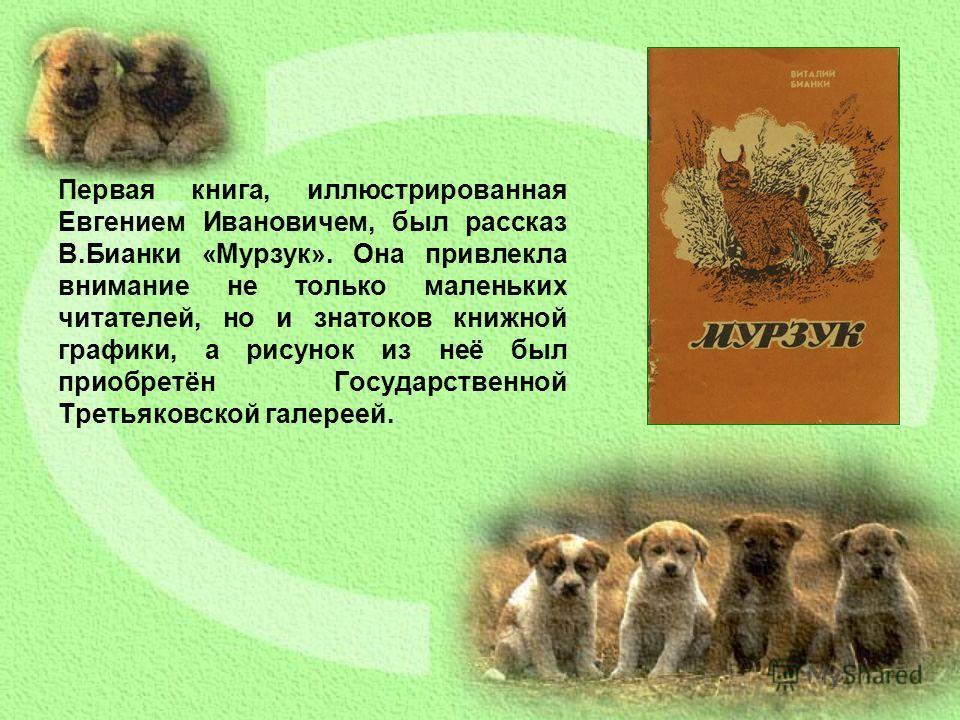 Первая книга, иллюстрированная Евгением Ивановичем, был рассказ В.Бианки «Мурзук». Она привлекла внимание не только маленьких читателей, но и знатоков книжной графики, а рисунок из неё был приобретён Государственной Третьяковской галереей.