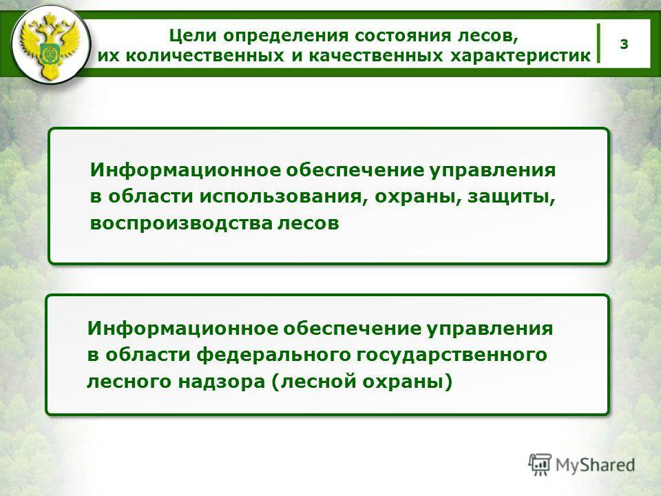 Цели определения состояния лесов, их количественных и качественных характеристик 3 Информационное обеспечение управления в области использования, охраны, защиты, воспроизводства лесов Информационное обеспечение управления в области федерального госуд