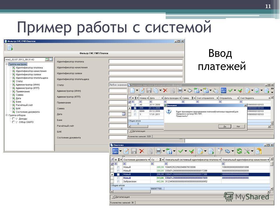 Пример работы с системой Ввод платежей 11