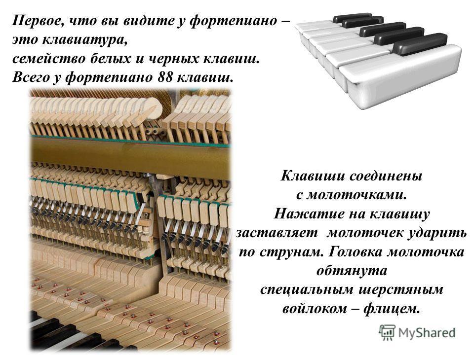 Первое, что вы видите у фортепиано – это клавиатура, семейство белых и черных клавиш. Всего у фортепиано 88 клавиш. Клавиши соединены с молоточками. Нажатие на клавишу заставляет молоточек ударить по струнам. Головка молоточка обтянута специальным ше