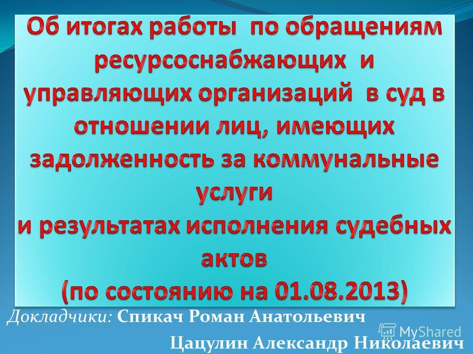 Докладчики: Спикач Роман Анатольевич Цацулин Александр Николаевич