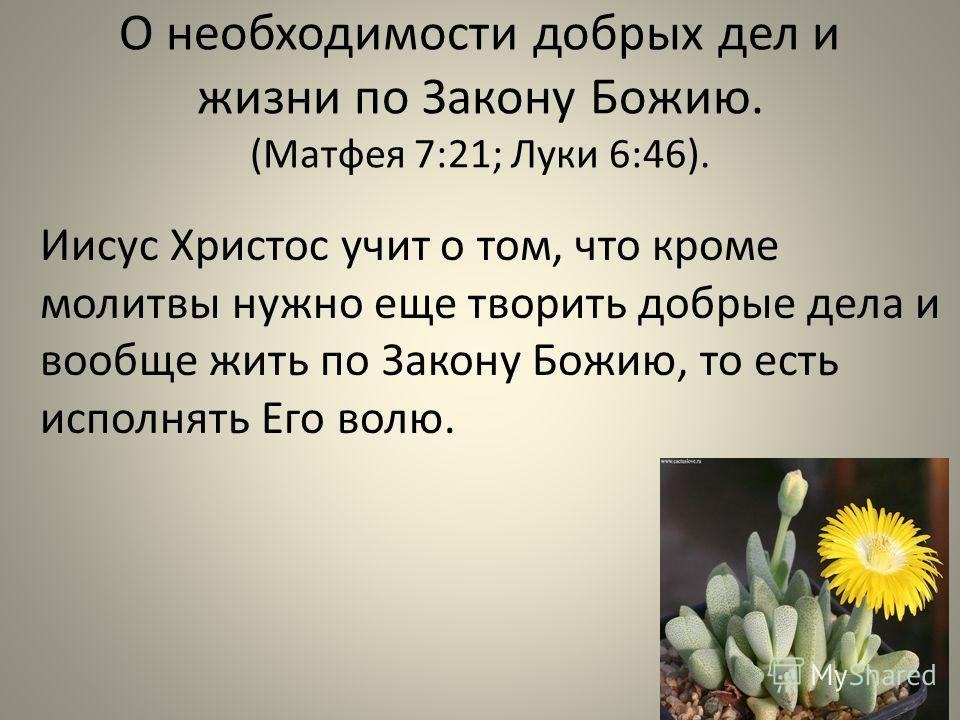 О необходимости добрых дел и жизни по Закону Божию. (Матфея 7:21; Луки 6:46). Иисус Христос учит о том, что кроме молитвы нужно еще творить добрые дела и вообще жить по Закону Божию, то есть исполнять Его волю.