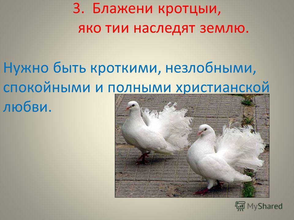 3. Блажени кротцыи, яко тии наследят землю. Нужно быть кроткими, незлобными, спокойными и полными христианской любви.