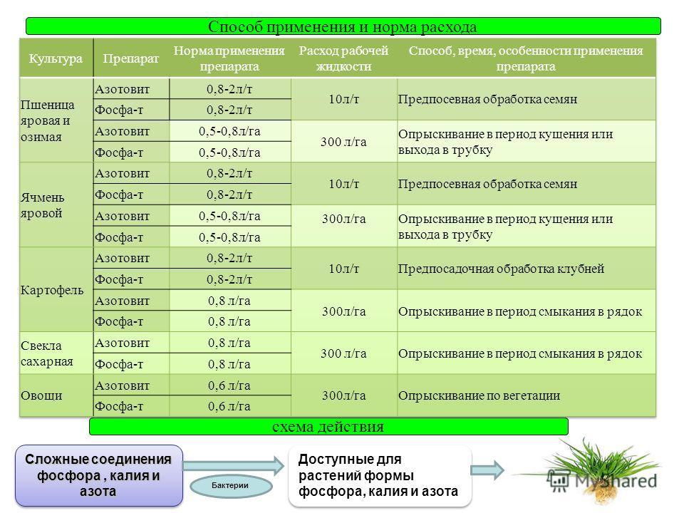 Способ применения и норма расхода схема действия Бактерии Сложные соединения фосфора, калия и азота Доступные для растений формы фосфора, калия и азота