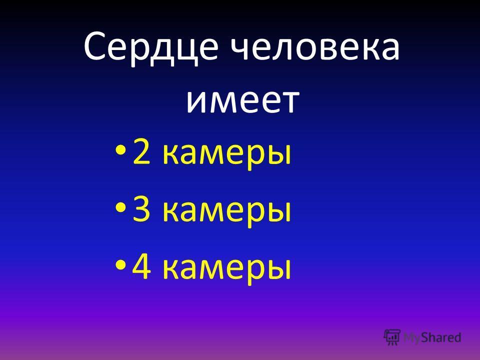 Сердце человека имеет 2 камеры 3 камеры 4 камеры