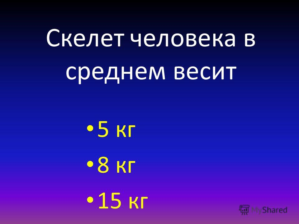 Скелет человека в среднем весит 5 кг 8 кг 15 кг