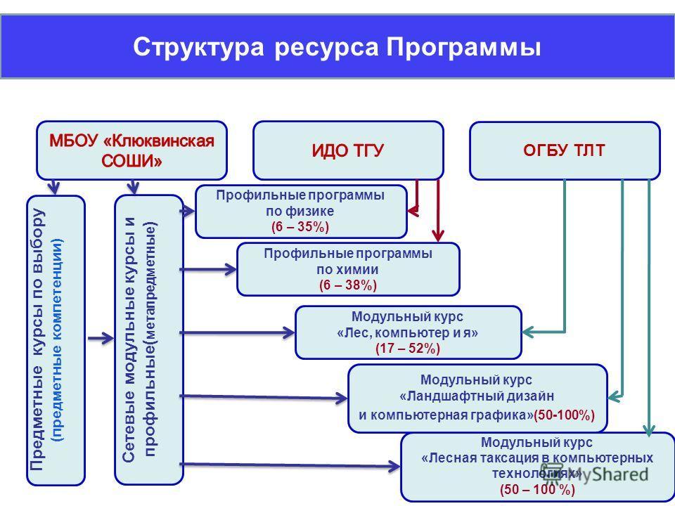 Структура ресурса Программы ОГБУ ТЛТ Предметные курсы по выбору (предметные компетенции) Сетевые модульные курсы и профильные( метапредметные ) Профильные программы по физике (6 – 35%) Профильные программы по химии (6 – 38%) Модульный курс «Лес, комп
