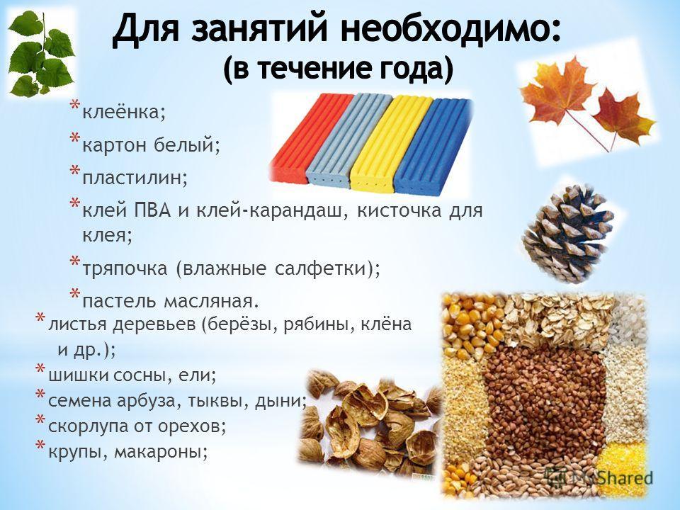* клеёнка; * картон белый; * пластилин; * клей ПВА и клей-карандаш, кисточка для клея; * тряпочка (влажные салфетки); * пастель масляная. * листья деревьев (берёзы, рябины, клёна и др.); * шишки сосны, ели; * семена арбуза, тыквы, дыни; * скорлупа от